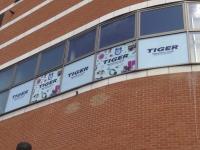 Tiger - O2 Finchley